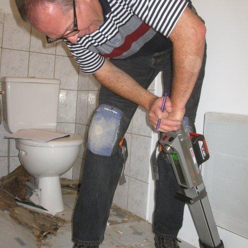 expertise bois charpente mérule champignons humidité